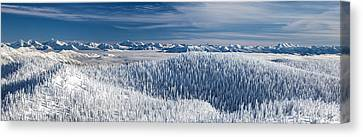 Rocky Mountain Winter Canvas Print by Aaron Aldrich