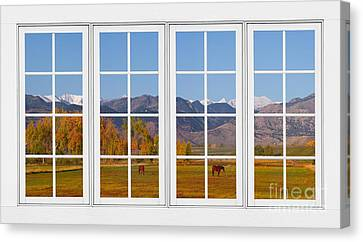 Rocky Mountains Horses White Window Frame View Canvas Print by James BO  Insogna