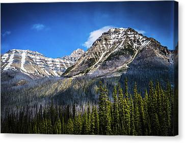 Canvas Print featuring the photograph Rocky Mountains Kootenay National Park by Rob Tullis