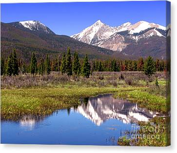 Rocky Mountains Peaks Canvas Print by Olivier Le Queinec