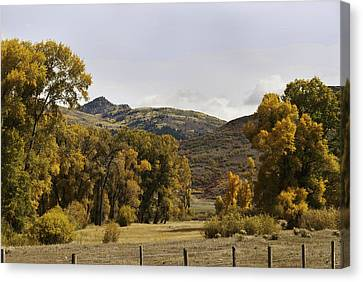 Rocky Peak At Lower Elk River Canvas Print by Daniel Hebard