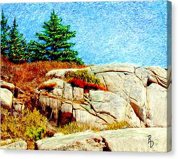 Rocky Maine Coast Canvas Print - Rocky Point by Ric Darrell