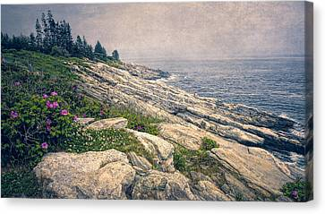 New England Lighthouse Canvas Print - Rocky Shore At Pemaquid by Joan Carroll