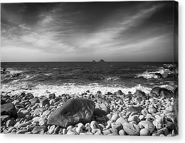 Rocky Shore Canvas Print by Chris Thaxter