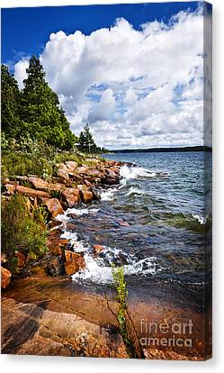 Rocky Shore In Georgian Bay Canvas Print by Elena Elisseeva