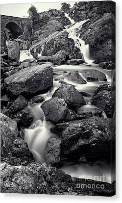 Rocky Stream Canvas Print by Adrian Evans