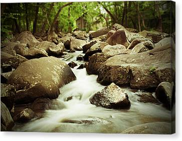 Rocky Stream Canvas Print by Michael Porchik