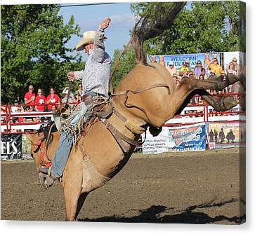Rodeo Canvas Print by Bruce  Morrell