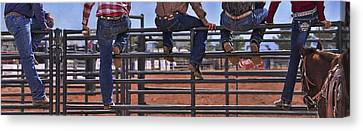 Rodeo Fence Sitters Canvas Print