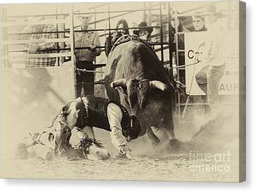 Rodeo Prepared To Be Punished Canvas Print by Bob Christopher