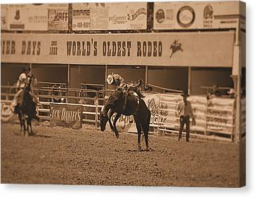 Rodeo  Canvas Print by Stormys Unique   Creations