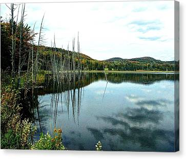 Rodgers Pond Canvas Print