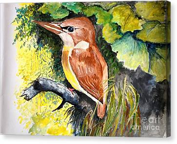 Canvas Print featuring the painting Rofous - Backed Kingfisher  by Jason Sentuf