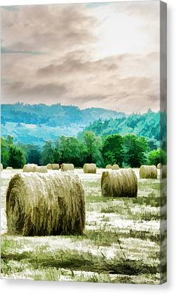 Rolled Bales Canvas Print