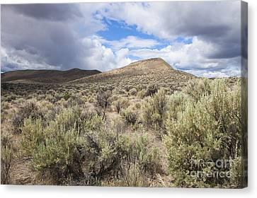 Canvas Print - Rolling Desert Hills by Sheri Van Wert