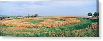 Rolling Farm Fields, North Of Dubuque Canvas Print by Panoramic Images