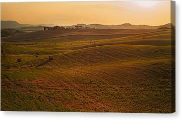 Canvas Print featuring the photograph Tuscany - Rolling by Francesco Emanuele Carucci