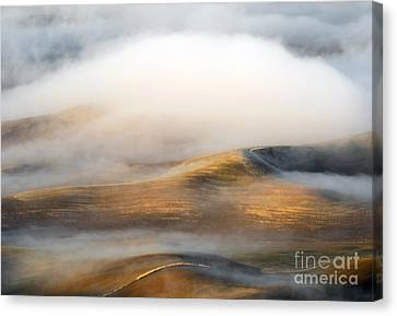 Rolling Gold Canvas Print by Mike  Dawson