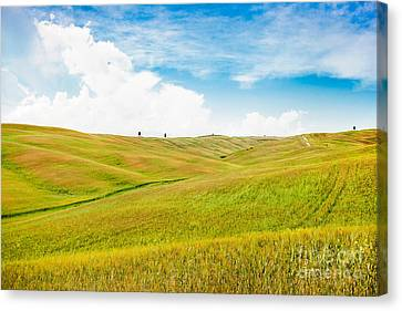 Rolling Hills In Tuscany Canvas Print by JR Photography
