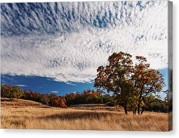 Rolling Hills Of The Texas Hill Country In The Fall - Fredericksburg Texas Canvas Print by Silvio Ligutti