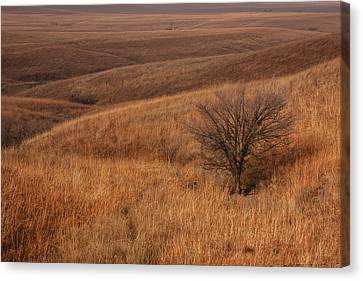 Canvas Print featuring the photograph Rolling Hills by Scott Bean