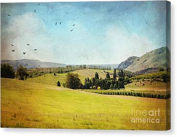 Lake Chelan Canvas Print - Rolling Hills by Sylvia Cook