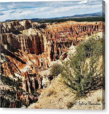 Canvas Print featuring the photograph Rolling In The Deep by Sylvia Thornton