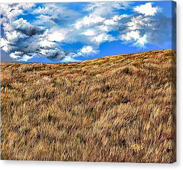 Canvas Print - Rolling by Maria Schaefers