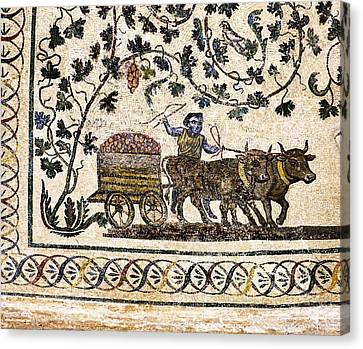 Roman Agriculture Canvas Print by Science Photo Library
