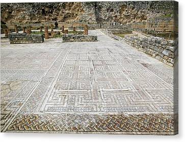 Roman Mosaic Floors Canvas Print by Ashley Cooper
