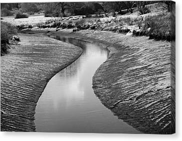 Canvas Print featuring the digital art Roman River Bend by David Davies