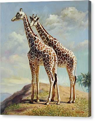 Romance In Africa - Love Among Giraffes Canvas Print