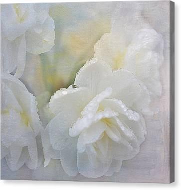 Romance In White Canvas Print
