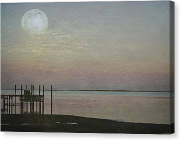 Romancing The Moon Canvas Print