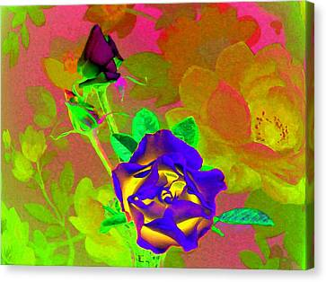 Romancing The Rose Canvas Print by Will Borden
