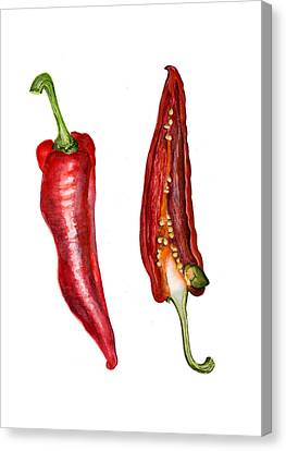 Romano Red Pepper Canvas Print by Alison Langridge