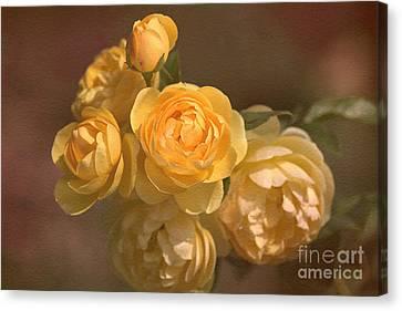 Romantic Roses Canvas Print by Joy Watson