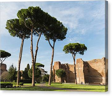 Caracalla Canvas Print - Rome, Italy. Terme Di Caracalla, Or by Panoramic Images
