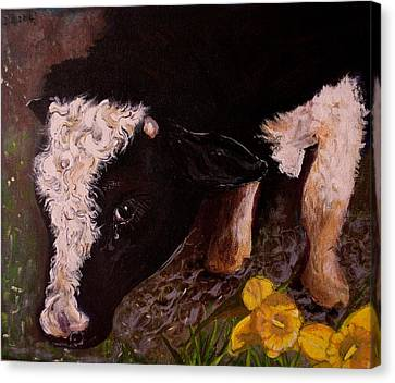 Canvas Print featuring the painting Ron The Bull by Maria  Disley