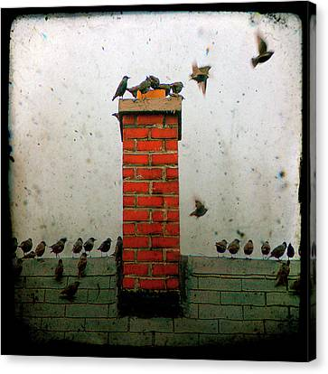 Roof Top Hoppers Canvas Print by Gothicrow Images