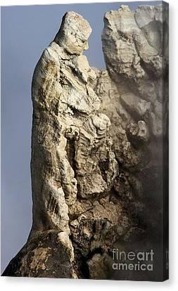 Roosevelt Geyser Canvas Print by Adam Jewell