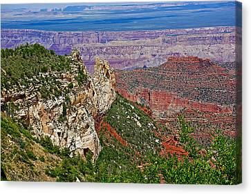 Roosevelt Point Two On North Rim/grand Canyon National Park-arizona   Canvas Print