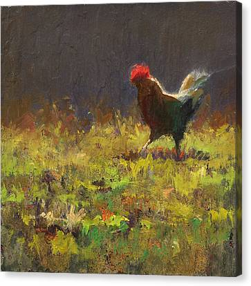 Rooster Strut Canvas Print by Karen Whitworth