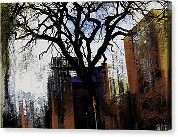 Rooted In The Unstable Canvas Print