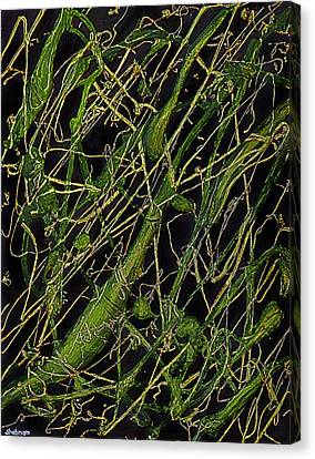 Canvas Print featuring the painting Roots by Shabnam Nassir