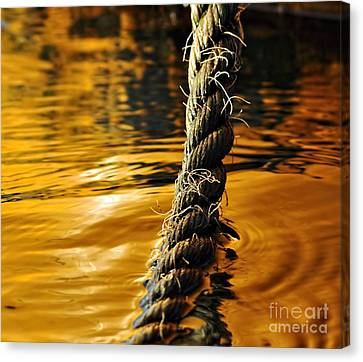 Rope On Liquid Gold Canvas Print by Kaye Menner