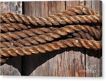 Roped Canvas Print by Dan Holm