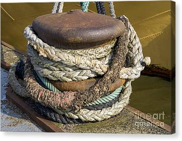 Ropes Canvas Print by Patricia Hofmeester