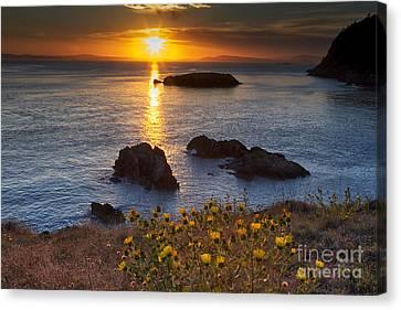 Sun Rays Canvas Print - Rosario Head Sunset by Mark Kiver