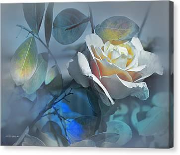 Rosas De Septiembre Canvas Print by Alfonso Garcia